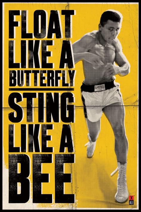 Plakát, Obraz - Muhammad Ali - vznášet se jako motýl, (61 x 91,5 cm)