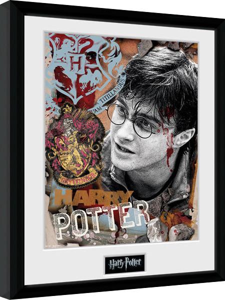 Obraz na zeď - Harry Potter - Harry Potter