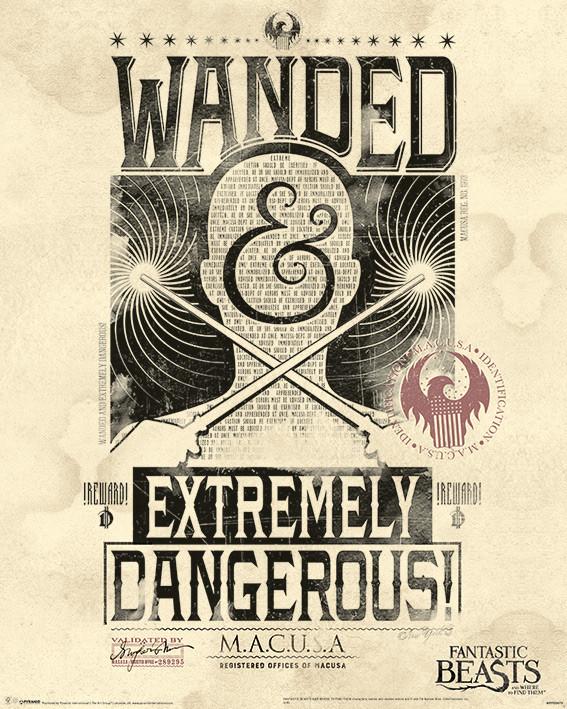 Plakát, Obraz - Fantastická zvířata a kde je najít - Extremely Dangerous, (40 x 50 cm)