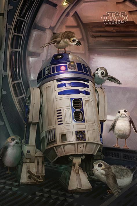 Plakát, Obraz - Star Wars: Poslední z Jediů - R2-D2 & Porgs, (61 x 91,5 cm)