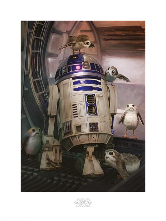 Obraz, Reprodukce - Star Wars: Poslední z Jediů - R2-D2 & Porgs, (60 x 80 cm)