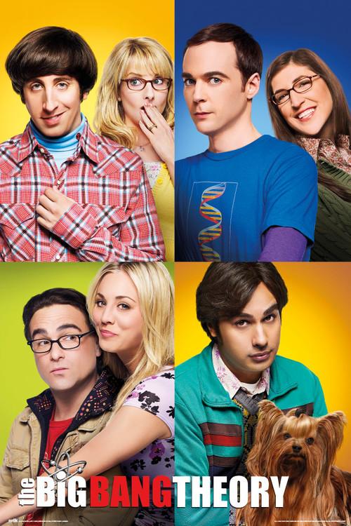 Plakát, Obraz - The Big Bang Theory (Teorie velkého třesku), (61 x 91.5 cm)