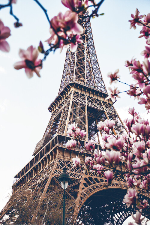 Plakát, Obraz - Paříž - Eiffel Tower, (61 x 91.5 cm)