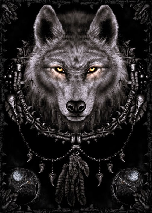 Poster Spiral - wolf dreams