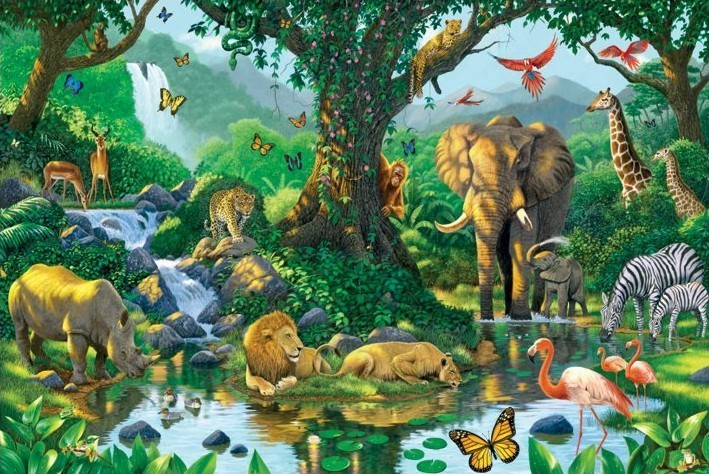 Harmony - jungle Affiche
