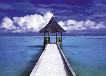Maledives - hut Poster