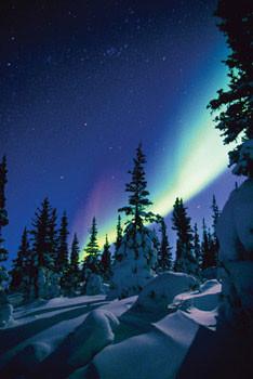 Nothern lights - snow Affiche