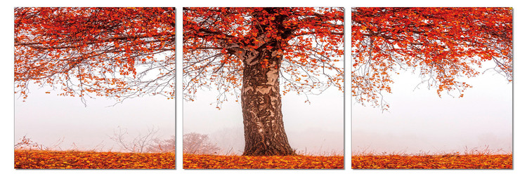 Mодерна картина Alone tree in autumn