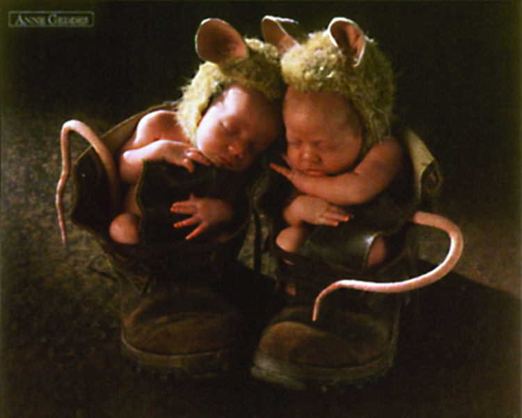 Anne Geddes - mice - плакат (poster)