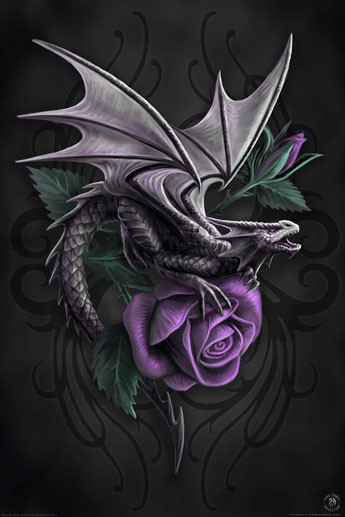 Anne Stokes - dragon beauty - плакат (poster)