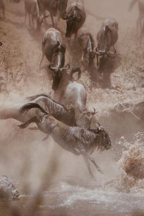 Arte fotográfico African strength