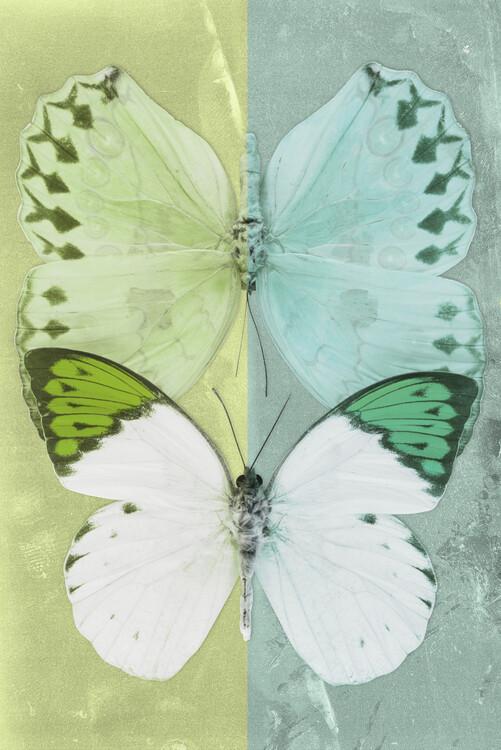 Arte fotográfico DUO FORMOIA - LIME GREEN & CORAL GREEN