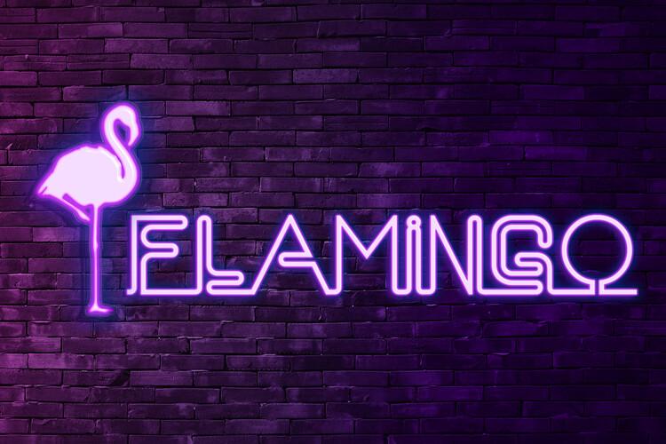 Umelecká fotografia Flamingo