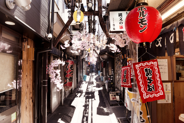 Arte fotográfico Omoide Yokocho Shinjuku II