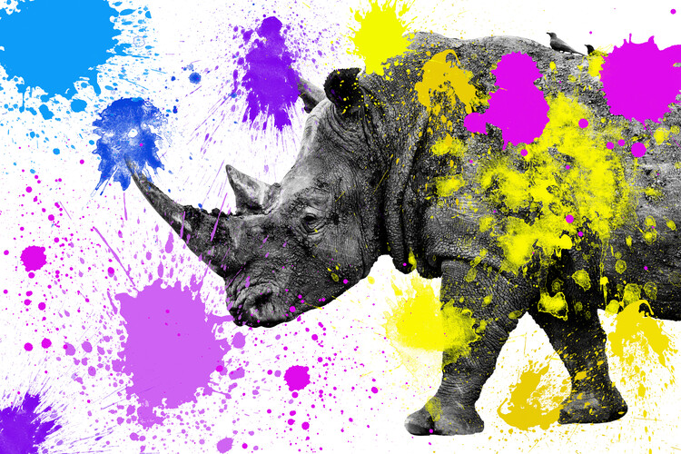 Umelecká fotografia Rhino