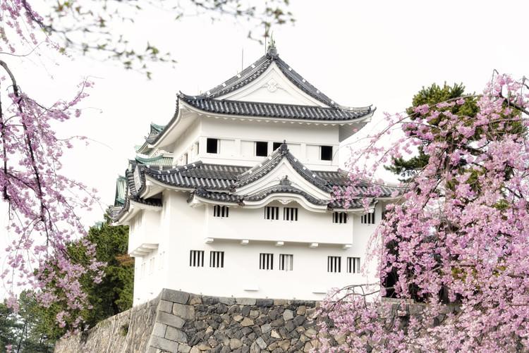 Umelecká fotografia Sakura Nagoya Castle