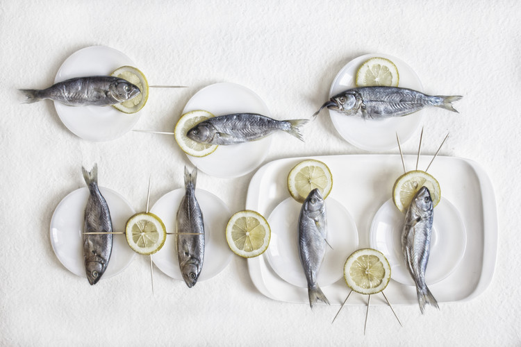 Kunstfotografie Still Life with Fish