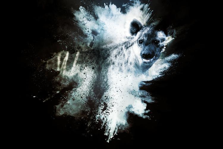 Arte fotográfico The Hyena