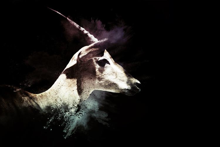 Arte fotográfico The Impala