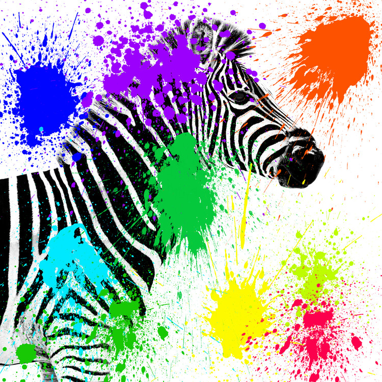 Arte fotográfico Zebra Profile