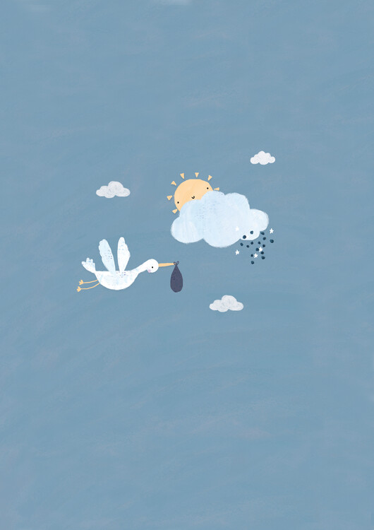 Arte fotográfico Baby boy stork