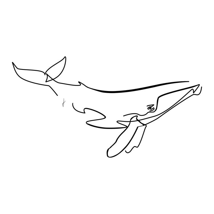 Kunstfotografie Balena