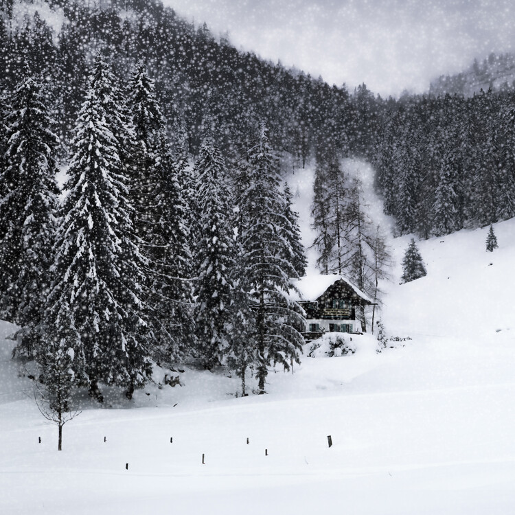 Umělecká fotografie Bavarian Winters Tale IX