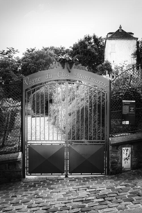 Kunstfotografie Black Montmartre - Vigne Montmarte