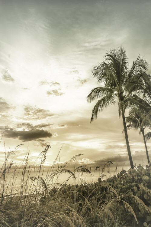 Kunstfotografi BONITA BEACH Bright Vintage Sunset