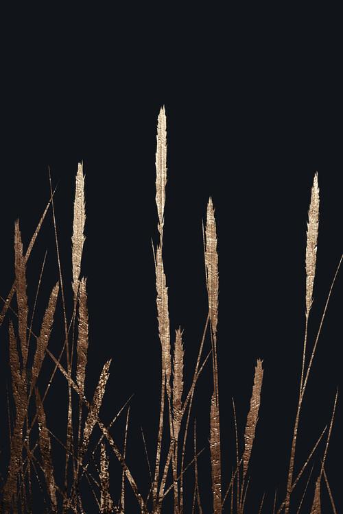 Ilustrace Golden Fields In The Dark