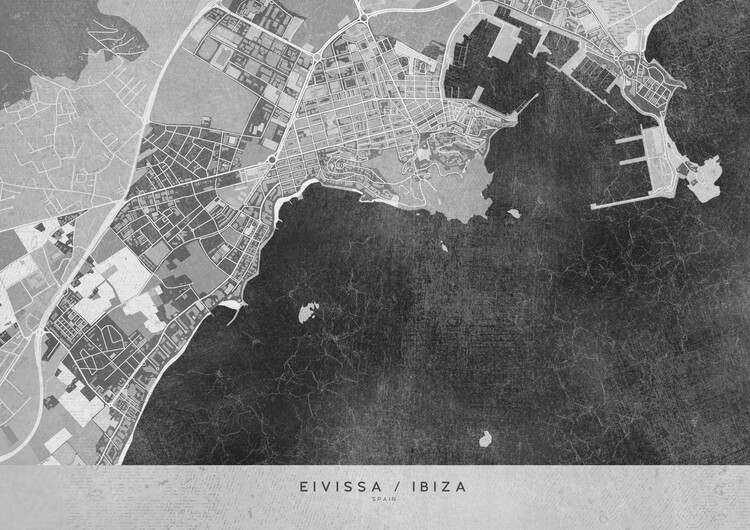 Fotomural Gray vintage map of Ibiza