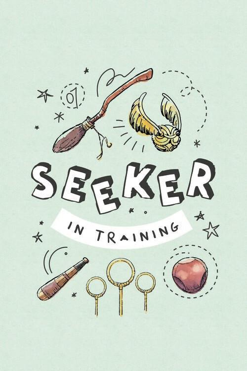 Plakat Harry Potter - Szukający w treningu