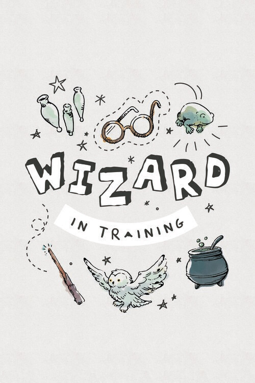 Poster Harry Potter - Trollkarl i utbildning