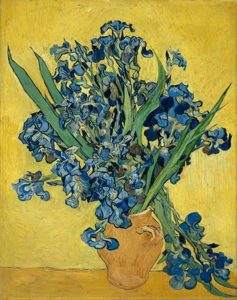 Irises, 1890 Obrazová reprodukcia