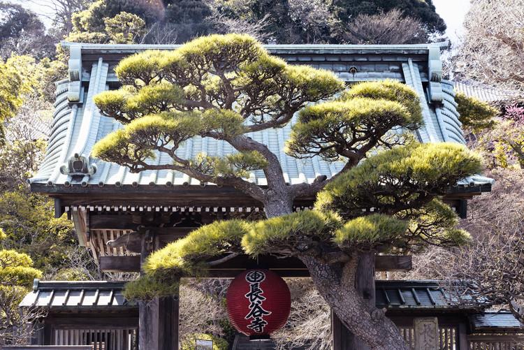 Kunstfotografi Japonese Temple