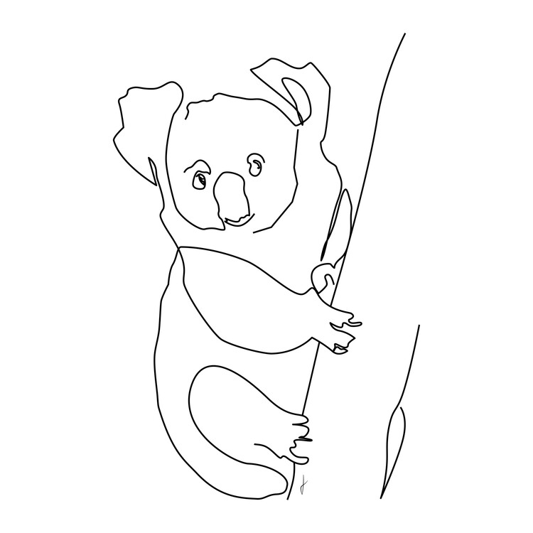 Kunst fotografie Koala