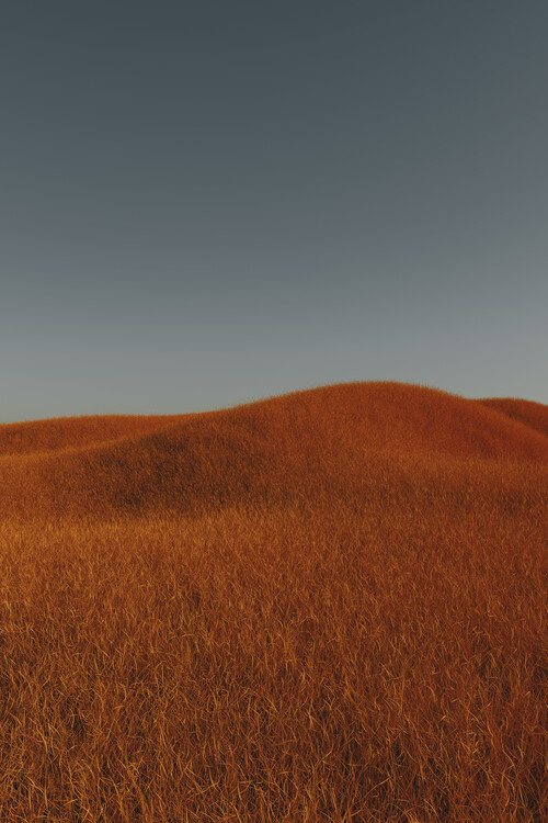 Umjetnička fotografija Minimal landscpases of a red grass at with a gradient sky series 4