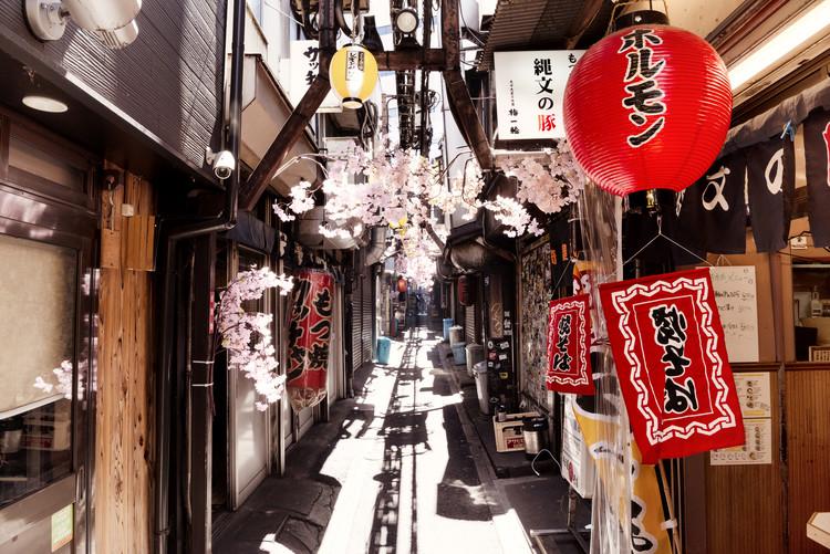 Umělecká fotografie Omoide Yokocho Shinjuku II