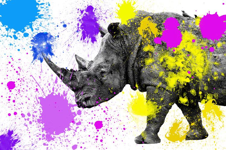 Umělecká fotografie Rhino
