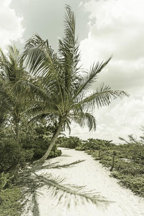 Umělecká fotografie Sanibel Island | Vintage