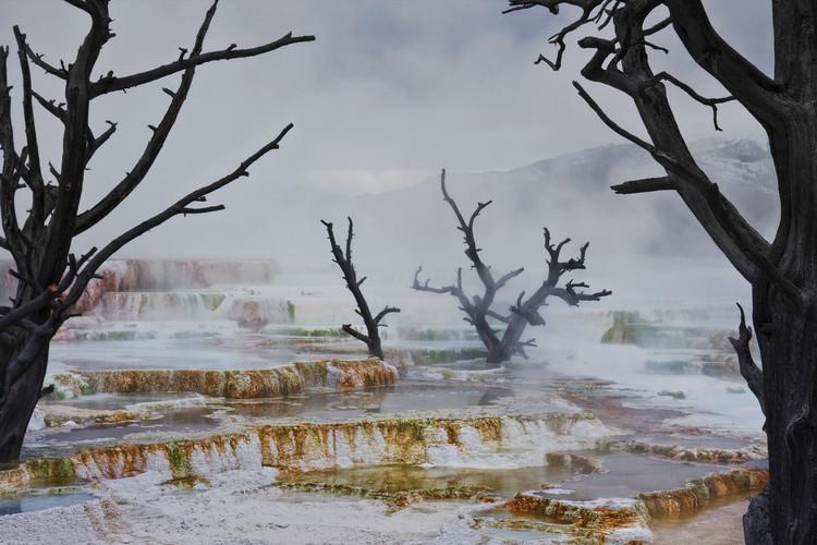 Umělecká fotografie  Strange Landscape