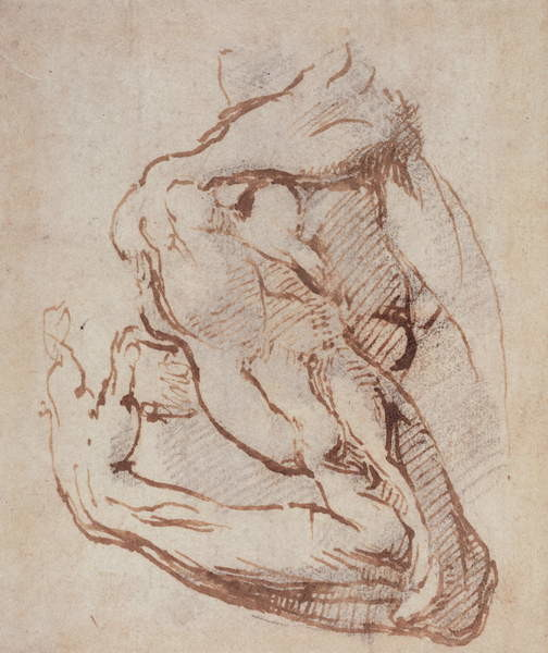 Obrazová reprodukce Study of an Arm (ink) Inv.1859/5/14/819