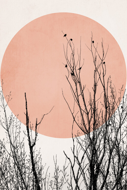 Ilustrace Sunset Dreams