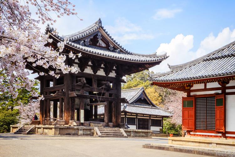 Umělecká fotografie Todai-Ji Temple