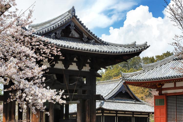 Umělecká fotografie Todai-ji Temple Nara