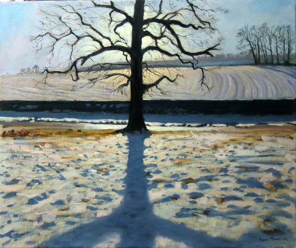 Obrazová reprodukce Tree and Shadow, Calke Abbey, Derbyshire