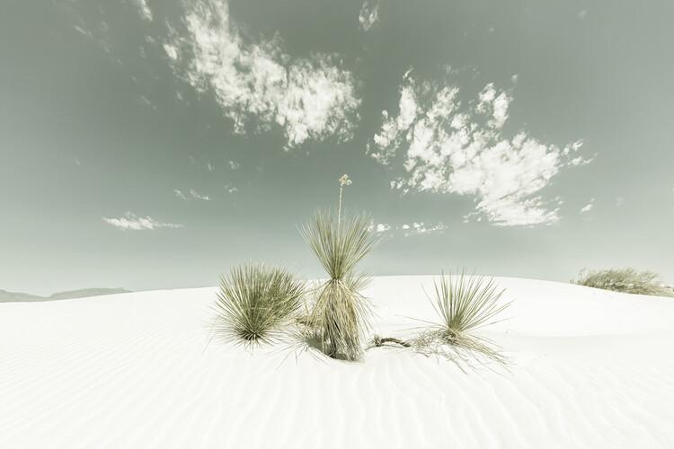 Kunstfotografie White Sands Vintage