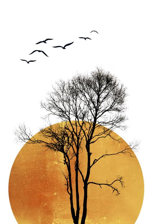 Ilustrace Winter Sunrise