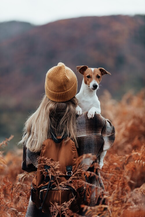 Художествена фотография Woman traveling with her dog