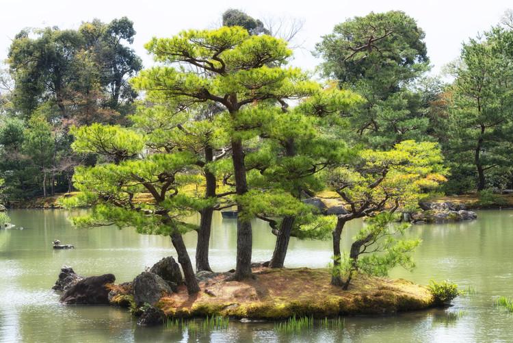 Canvastavla Vegetal Island